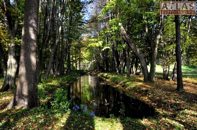 Park dworski w Bielinach