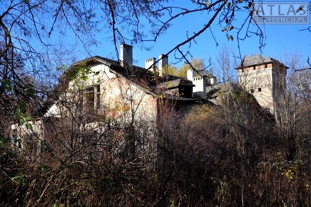 Dwór Czartoryskich w Dąbrowicy
