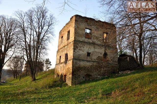 Zamek w Dąbrówce Starzeńskiej