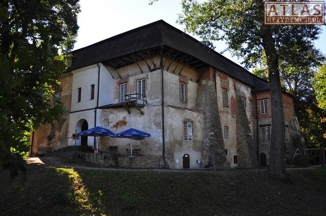 Pałac Sołtyków w Kurozwękach