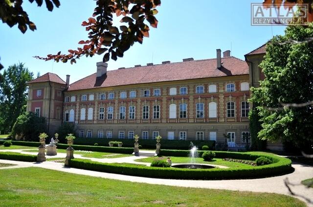 Zamek_Łańcut_foto_3
