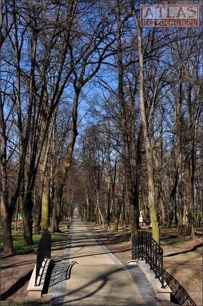 Park w Nisku