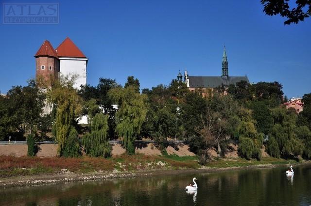 Zamek Krolewski w Sandomierzu_foto_3