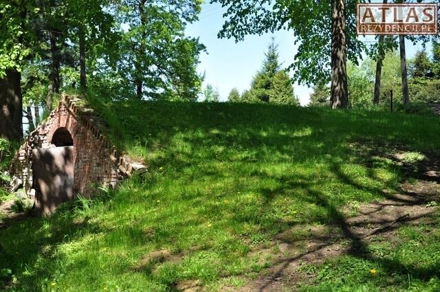 Piwnice - Pałac w Strzyżowie