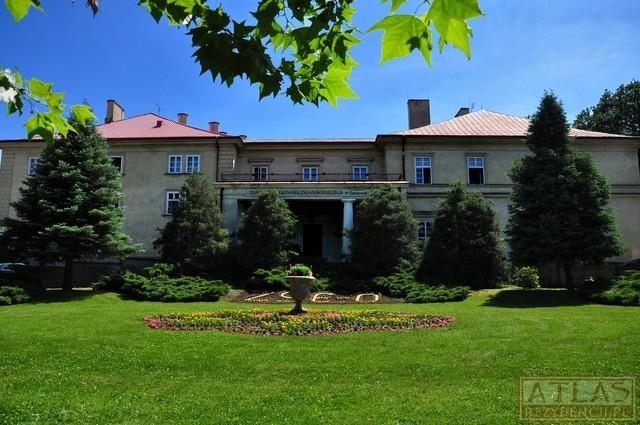 Pałac w Tarnowie-Gumniskach_Foto2