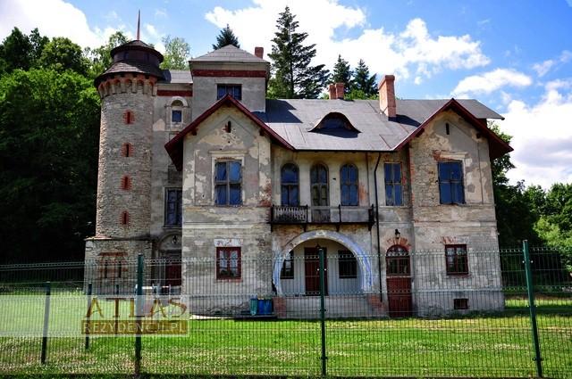 Pałac_Dzięki_Wi±zownica_Kolonia_foto3
