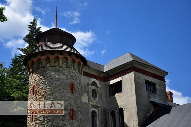 Pałac_Dzięki_Wi±zownica_Kolonia_foto5