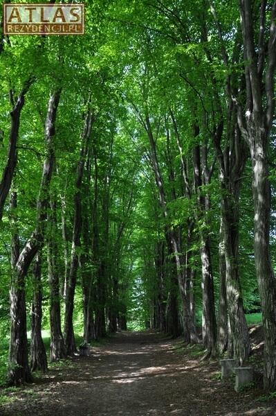 Park w Wiśniowej