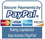 PayPal_ikona