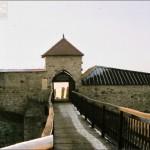 Dobczyce - Zamek