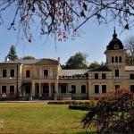 Kluczkowice - Pałac Kleniewskich