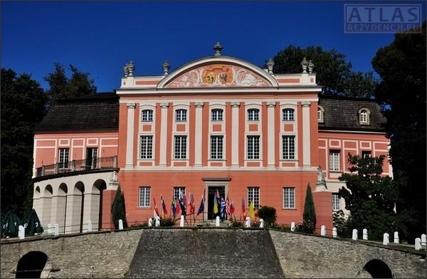 Kurozwęki - Pałac