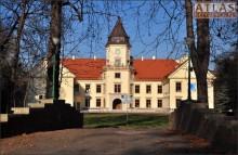Tarnobrzeg-Dzików - Zamek