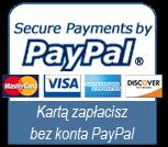 Płatności zabezpiecza PayPal